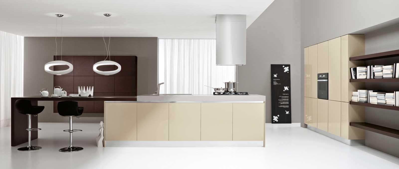 Elégante et intemporelle cette cuisine aux façades brillantes sans poignée avec prise de main en aluminium ne passera jamais de mode.